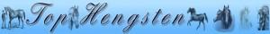 Top Hengsten logo